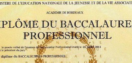 Image illustrant l'article Bacpro de Les Clionautes