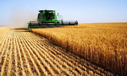 Image illustrant l'article agriculture de Les Clionautes