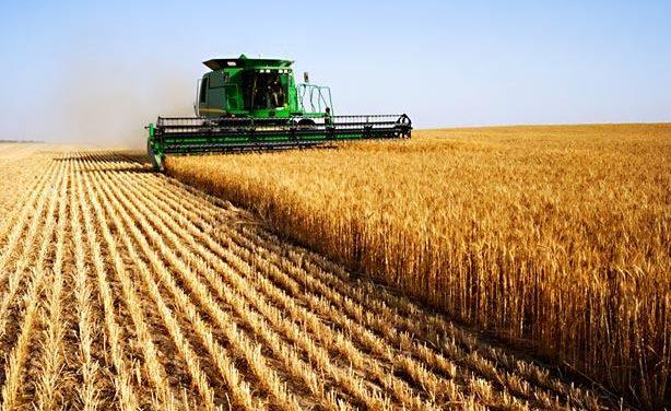 L'Europe agricole : déclin ou puissance ?