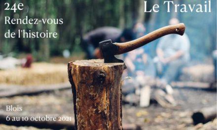Image illustrant l'article 22474E96-5509-4B2F-BD22-19D2C3DD6E47 de Les Clionautes