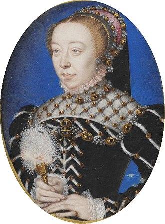 Catherine de Médicis, histoire secrète d'une querelle de famille