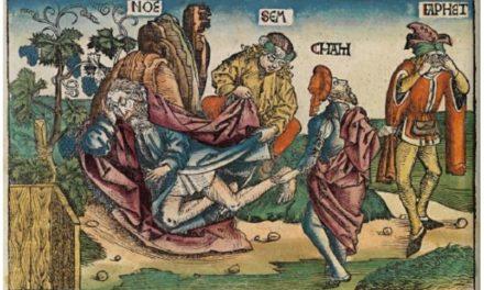 Image illustrant l'article cham de Les Clionautes