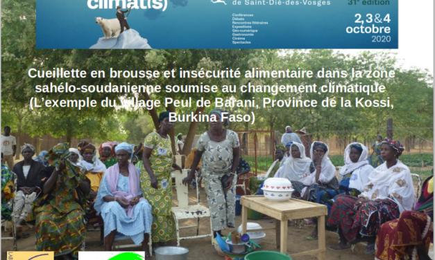 Changements climatiques et alimentation au Sahel