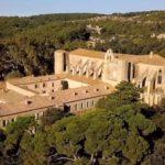 Valmagne, un destin viticole