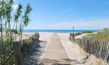 Image illustrant l'article beach-1230727_1920 de Les Clionautes