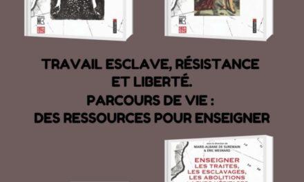 Image illustrant l'article Travail_esclave_r_sistance_et_libert_Parcours_de_vie_des_ressources_pour_enseigner de Les Clionautes